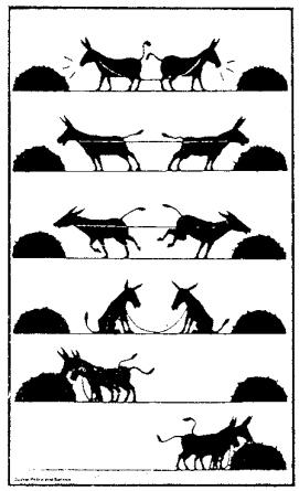 http://jameswilsonpmp.files.wordpress.com/2009/02/cooperation-two-mules.jpg